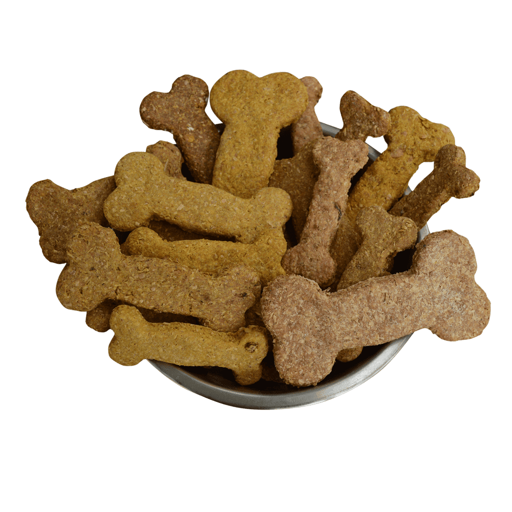 Mixed flavoured homemade dog biscuitsin a bowl,